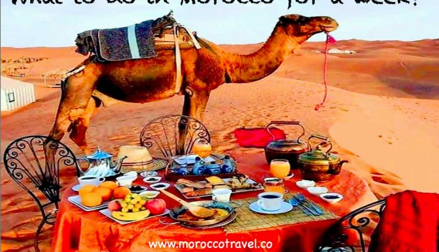 what-to-do-in-Morocco-for-a-week-5